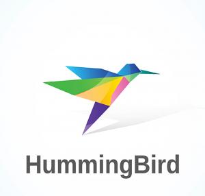 Humming Bird Update